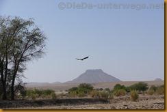 Namibia0442