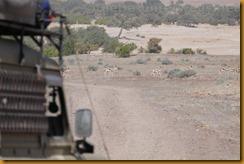 Namibia0515