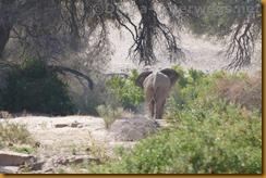 Namibia0548