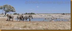 Namibia0737
