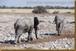 Namibia0852