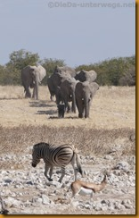 Namibia0906