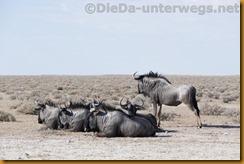 Namibia0916