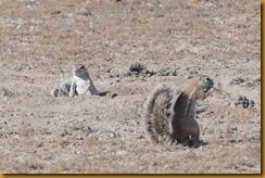 Namibia0927