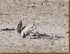 Namibia0931