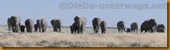 Namibia1034
