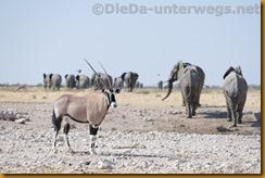 Namibia1090