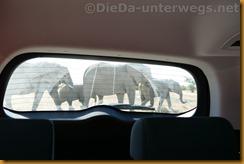 Namibia1193