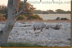 Namibia1324