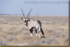Namibia1397