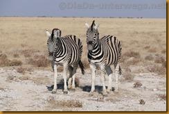 Namibia1482