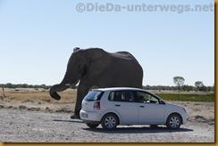 Namibia1546