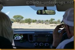 Namibia1599