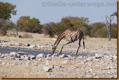 Namibia1677