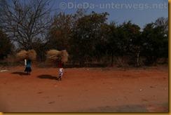 Simbabwe0394