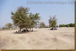 Simbabwe0440