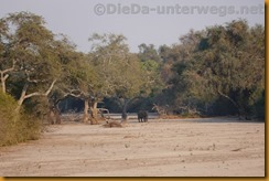 Simbabwe0757