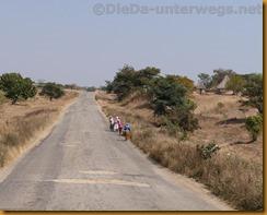 Simbabwe0814