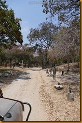 Simbabwe0819