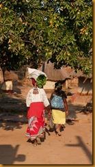 Simbabwe0931