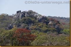 Simbabwe1155
