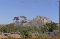 Simbabwe1205