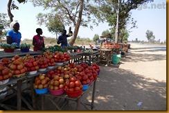Simbabwe1254