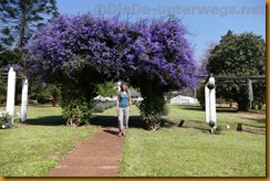 Simbabwe1632
