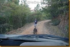 Simbabwe2087