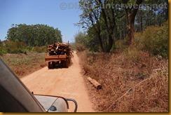 Simbabwe2143