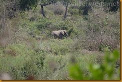 Simbabwe2304