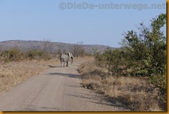 Simbabwe2326
