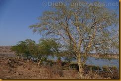 Simbabwe2365