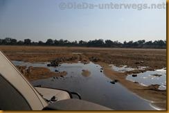 Simbabwe2439