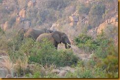 Simbabwe2466