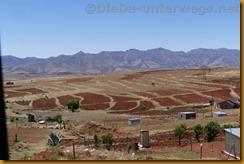 Lesotho0010