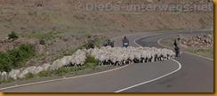 Lesotho0045