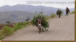 Lesotho0190
