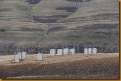 Lesotho0239
