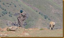 Lesotho0494