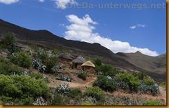 Lesotho0535