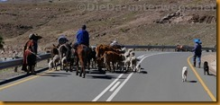 Lesotho0901