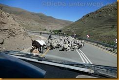 Lesotho0909