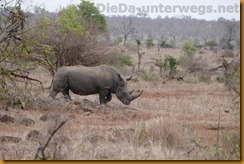Südafrika1695