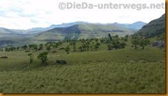 Südafrika2401
