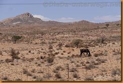 Namibia2445