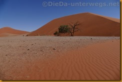 Namibia3261