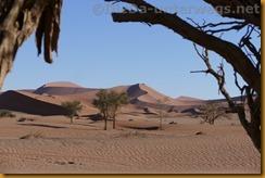 Namibia3306