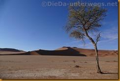 Namibia3312