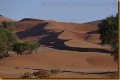 Namibia3324